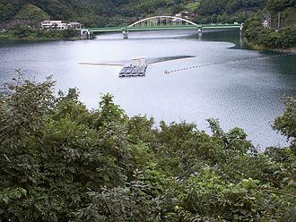 Lake Okutama - Image: Lake Okutama 0050