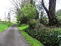 Lane, Aghaweenagh (geograph 2914377).jpg