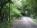 Lane crossing Nant Meidrum, Ceredigion - geograph.org.uk - 915662.jpg
