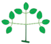 Leaf morphology type ternately-compound biternate.png