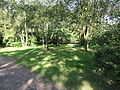 Leforest - Terril n° 122A, 10 de l'Escarpelle Ouest (08).JPG