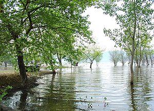 Thessaloniki (regional unit) - Lake Volvi