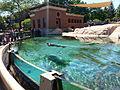 Lincoln park zoo pre-school field trip (18205815689).jpg