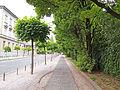 Ljubljana - sidewalk.JPG