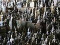 Lower cave Buddha statues February 2017.jpg