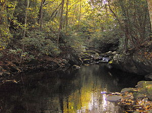 Little River (Tennessee) - Lynn Camp Prong, just above its confluence with Thunderhead Prong