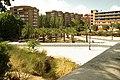 MADRID A.V.U. JARDIN-PARQUE DE PEÑUELAS PALMERAS - panoramio - Concepcion AMAT ORTA… (1).jpg