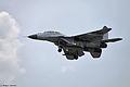 MAKS Airshow 2013 (Ramenskoye Airport, Russia) (526-45).jpg