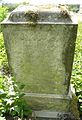 MOs810 WG 2015 22 (Notecka III) (Brzegi kolo Krzyza, old evangelical cemetery) (9).JPG