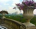 Maceta en el Castillo de Chapultepec - panoramio.jpg
