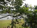 MalacananMuseum9708 15.JPG