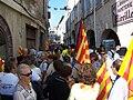 Manifestation pour la pluralité des langues d'Oc rues de Beaucaire-Tarascon.JPG
