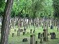 Mannheim-Jued-Friedhof.jpg