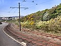 Manx Electric Railway - geograph.org.uk - 2389283.jpg