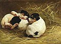Marie H. Guise Newcomb - Three Beagle Pups Napping, 1893.jpg