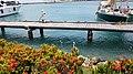 Marina in Oranjestad- 4.jpg