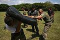 Marines Train in Costa Rica DVIDS315747.jpg