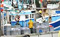 Marins-pêcheurs travaillant sur leur bateau au port (18).JPG