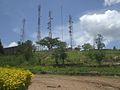 Masts on Arua Hill.jpg