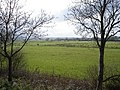 Meadows near the River Adur - south of Henfield - geograph.org.uk - 39743.jpg