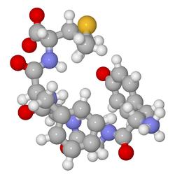 Preproenkephalin A