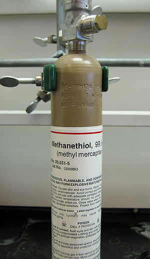 Methanethiol - Cylinder of methanethiol gas