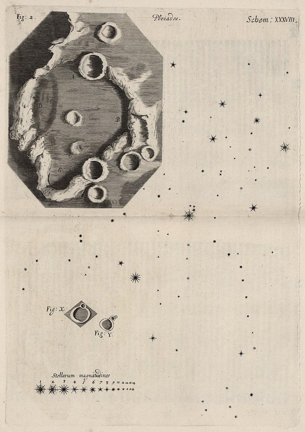 Micrographia Schem 38