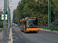 Milano viale Umbria filobus.JPG