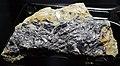 Molybdenite in Switzerland.jpg