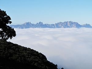 Montserrat, des de la serra de l'Obac, sembla emergir de la boira.jpg