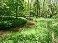 Moulicent Ruisseau de Marchainville P1070144.JPG