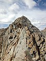 Mount Emerson Summit Ridge.JPG