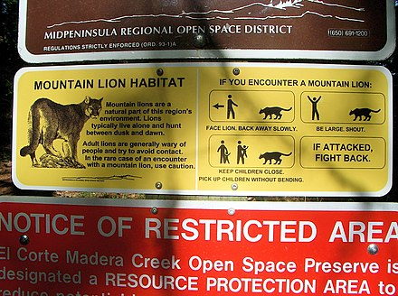 Mountain Lion warning sign in California, US. MountainLionAttackProtocol.jpg