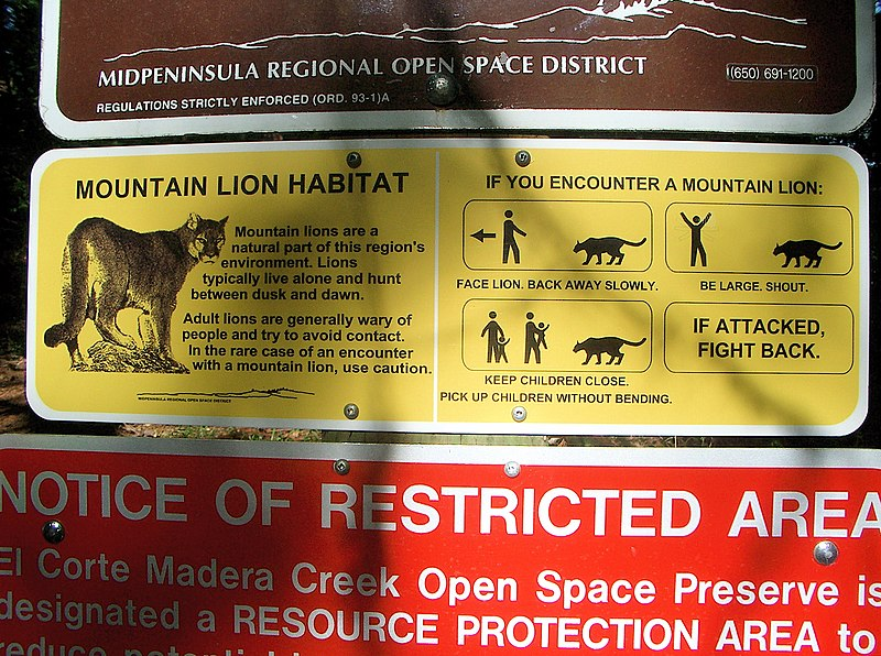 File:MountainLionAttackProtocol.jpg