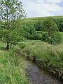 Mountain Stream near Wernfeudwy, Carmarthenshire - geograph.org.uk - 512656.jpg