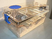 An individually ventilated and sealed cage for laboratory mice