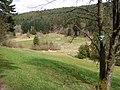 NSG Glaswiesen und Glaswald 01.jpg