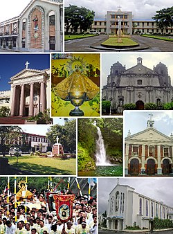 (From top, left to right) Holy Rosary Seminary, Universidad de Santa Isabel, Naga Metropolitan Cathedral, Our Lady of Peñafrancia, Ateneo de Naga University, Our Lady of Peñafrancia Shrine, Malabsay Falls, Naga City Hall, Carmelite Monastery, Peñafrancia Festival
