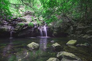 Nagalapuram - Nagalapuram Hill Streams