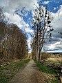Naturschutzgebiet in Raitenhaslach.jpg