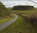 Near Old Dale Plantation - geograph.org.uk - 1058340.jpg