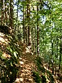 Neuwelter Jägersteig 2 - panoramio.jpg