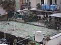 Neve a Roma - panoramio (3).jpg