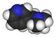 Nikotino-3D-vdW.png