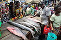 Nigeria fish1.jpg