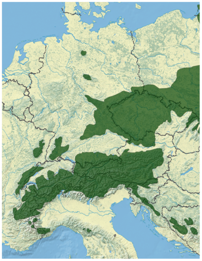 Norway Spruce Picea abies distribution in Western Europe map.png