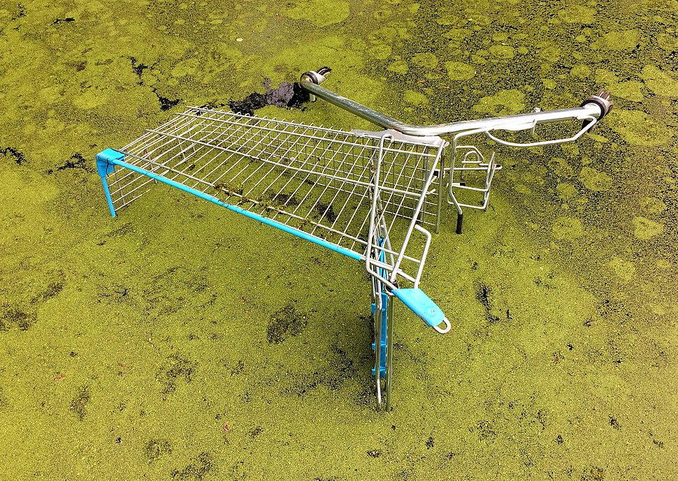 Objects. Abandoned shopping cart