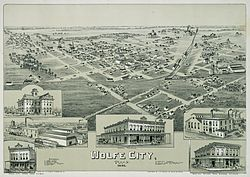 Wolfe City in 1891