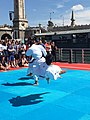 Olympic Days Paris June 2017 - Karatekas 02.jpg
