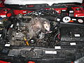 Opossum discovered in engine compartment, March 2015.JPG